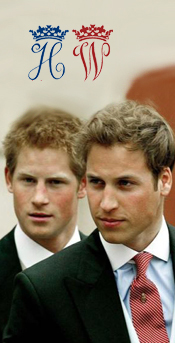 Les princes William et Harry